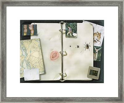 This Artwork Is Called Lyme Disease Framed Print by Christopher Klein