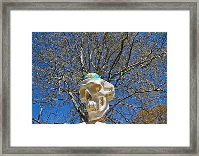 Thought Theater  Framed Print by Betsy C Knapp
