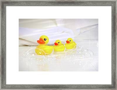 Three Little Rubber Ducks Framed Print by Sandra Cunningham
