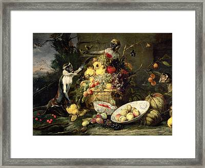 Three Monkeys Stealing Fruit Framed Print by Frans Snyders