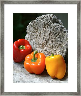 Three Peppers Framed Print by Jim  Arnold