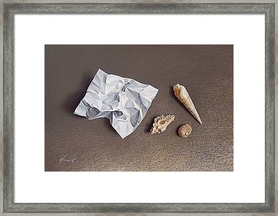 Three Shells For Collection Framed Print by Elena Kolotusha