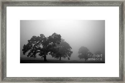Through Time Framed Print by Amanda Barcon