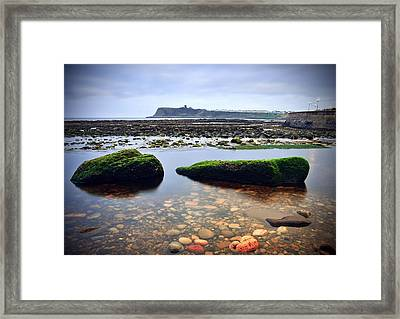 Tide Out Framed Print by Svetlana Sewell
