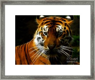 Tiger Portrait Framed Print by Katja Zuske