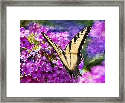 Tiger Swallowtail Morning Feed Framed Print by J Larry Walker