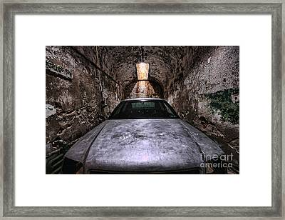 Tight Squeeze Framed Print by Andrew Paranavitana