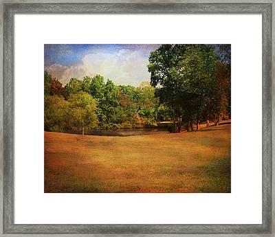 Timbers Pond Framed Print by Jai Johnson