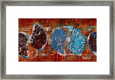 Time Line Framed Print by Emma Manners