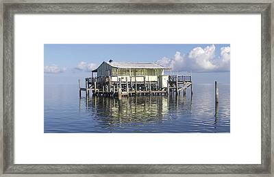 Time Out Framed Print by Kevin Brant