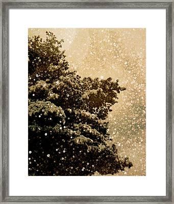 Tiny Tales Framed Print by Studio Yuki