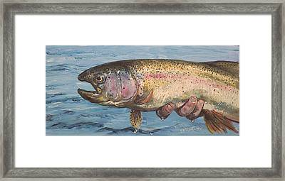 To Hold A Rainbow Framed Print by Scott Thompson