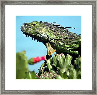 To The Point Framed Print by Karen Wiles