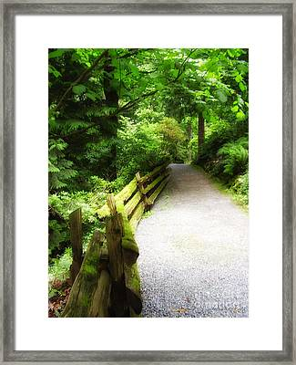 To Walk The Path Framed Print by Diana Cox