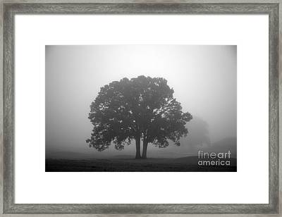 Together Always Framed Print by Amanda Barcon