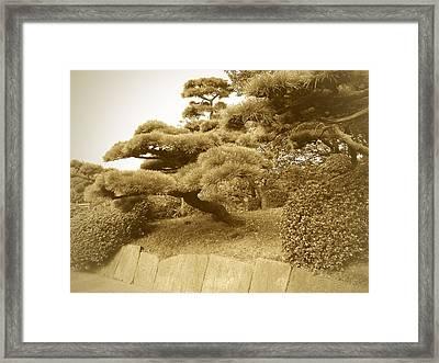 Tokyo Park Framed Print by Naxart Studio