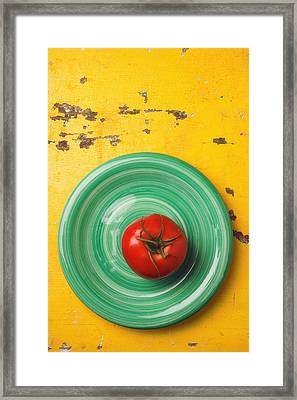 Tomato On Green Plate Framed Print by Garry Gay