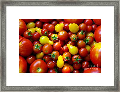 Tomatoes Background Framed Print by Carlos Caetano