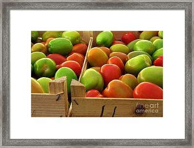 Tomatoes Framed Print by Carlos Caetano