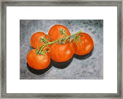 Tomatoes Framed Print by Linda Pope
