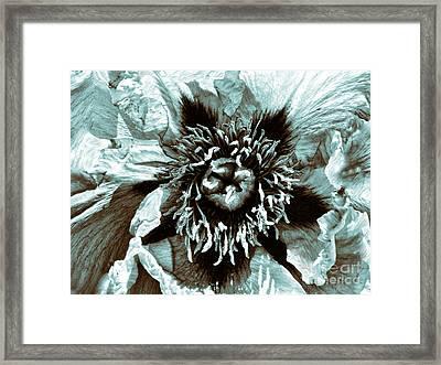Toned Floral Print Framed Print by Jeff Breiman