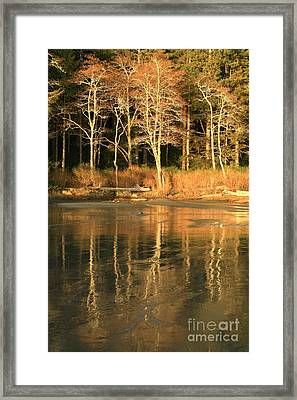 Tonquin Park Framed Print by Frank Townsley