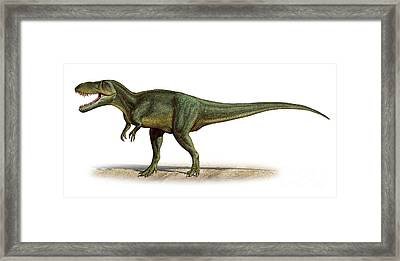 Torvosaurus Tanneri, A Prehistoric Era Framed Print by Sergey Krasovskiy