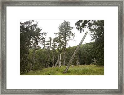 Totem Poles Stand In A Deserted Village Framed Print by Taylor S. Kennedy