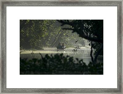 Tourists Exploring The Rain Forest Framed Print by Tim Laman