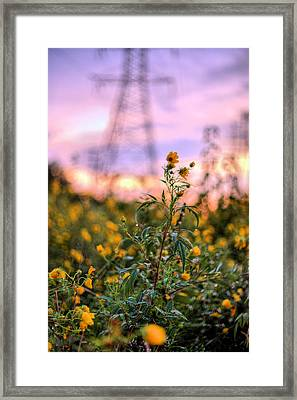 Towers Framed Print by JC Findley