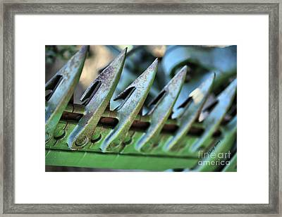 Tractor Tines Framed Print by Cheryl Young