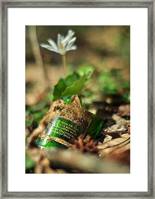 Traditional Hillbilly Style Framed Print by Rebecca Sherman