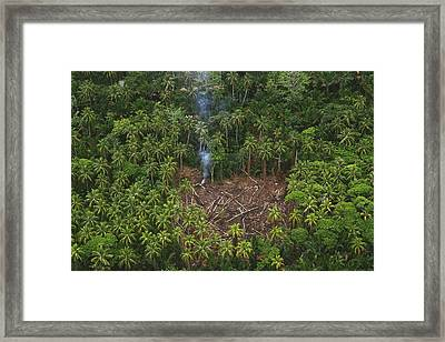 Traditional Slash And Burn Clearcut Framed Print by Gerry Ellis