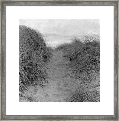 Trail Through The Sand Dunes Framed Print by Daniel J. Grenier