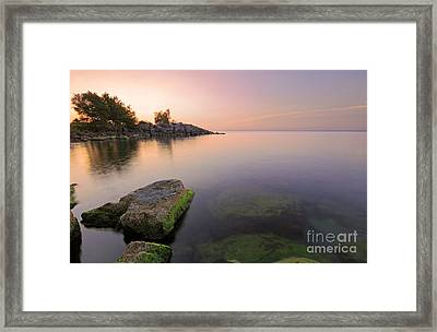 Tranquil Morning Framed Print by Charline Xia
