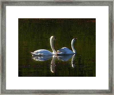 Tranquility Framed Print by Barbara  White