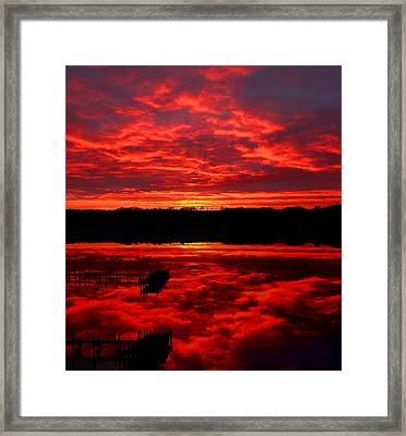 Transformation Framed Print by Tim Scullion