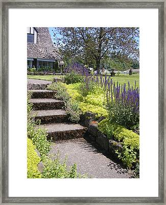 Travel The Garden Path Framed Print by Carol Sabez