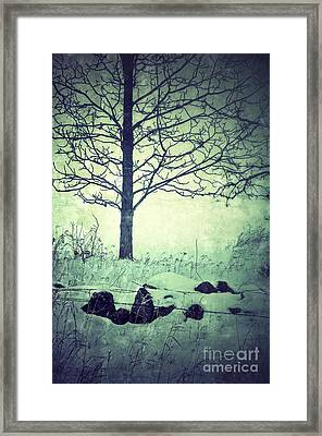 Tree And Fence In The Fog And Snow Framed Print by Jill Battaglia