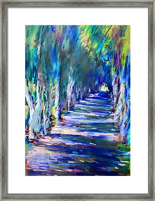 Tree Lined Road Framed Print by Ylli Haruni