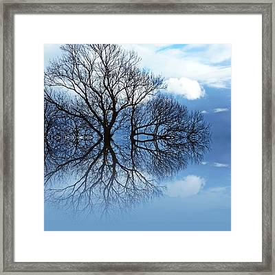 Tree Of Life Framed Print by Sharon Lisa Clarke