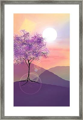 Tree On A Hill Framed Print by Ginny Schmidt