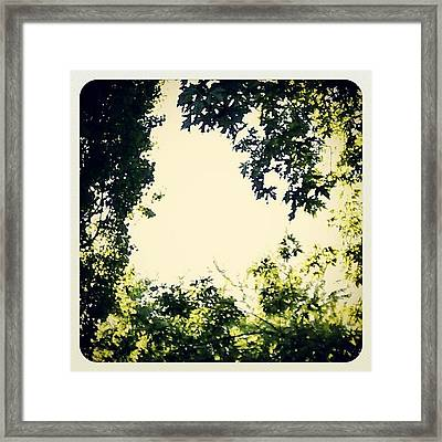 #trees #green #sky #pattern #style Framed Print by My Mcwp