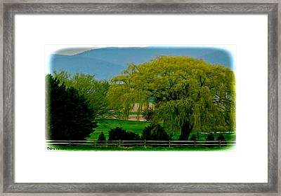 Trees Gulp In The Color Framed Print by Debra     Vatalaro