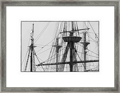 Trees On A Ship Framed Print by Hideaki Sakurai
