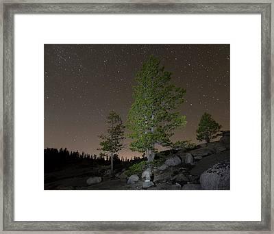Trees Under Stars Framed Print by Sean Duan