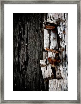 Tremor Framed Print by Odd Jeppesen