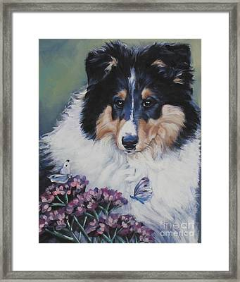 Tricolor Collie Pup Framed Print by Lee Ann Shepard