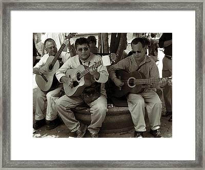 Trio Framed Print by RicardMN Photography