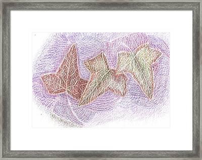 Triple Leaves Framed Print by Anne-Elizabeth Whiteway